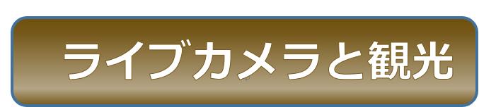 カメラ ライブ 小笠原 諸島